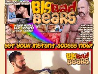 Big Bad Bears